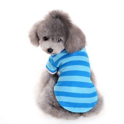 Stripe Polo Shirt Blue