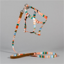 Orange Multi Striped Collar, Leash & Harness