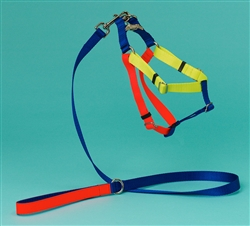 Blue, Yellow & Orange Color Block Nylon Harness