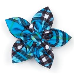Bias Plaid Blue Collar Flower