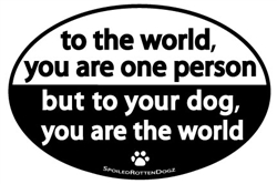 You Are The World Magnets