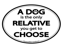A Dog Is the Only Relative You Get to Choose Magnets