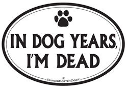 In Dog Years, I'm Dead Magnets