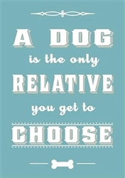 Dog Is Only Relative You Get to Choose Fridge Magnets