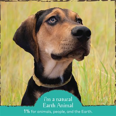 Earth Animal Flea and Tick Collar