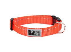 Primary Collars and Leads - Orange