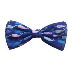 Whale Watch Bow Tie by Huxley & Kent