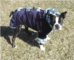 DIG THOSE BONES COAT / BLUE LEOPARD/ SIZE XX-SMALL