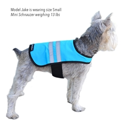 Blue Cooling Safety Vests