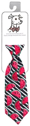 Watermelon Long Tie by Huxley & Kent