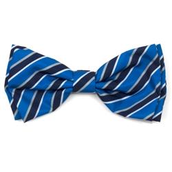 Prep Stripe Blue Bow Tie