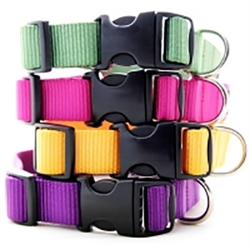 Nylon Webbing Collars & Leashes - 27 Colors