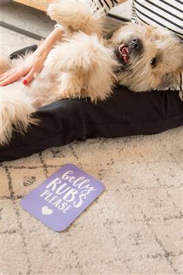 Pet Milestone Photo Sharing Cards