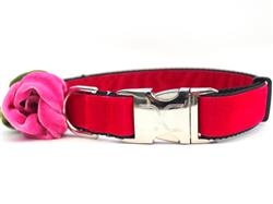 Rosie Red Velvet Collar Silver Metal Buckles