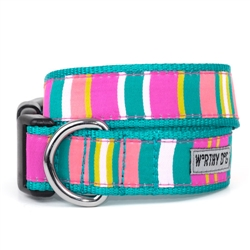 Fiesta Stripe Collar & Lead Collection