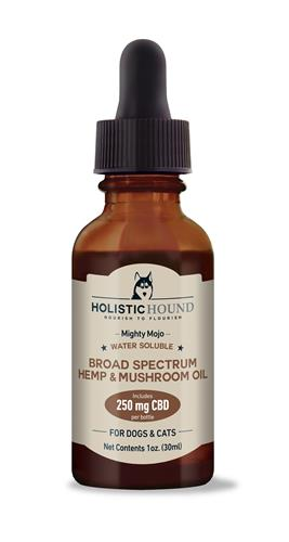 Mighty Mojo Water Soluble Broad Spectrum Hemp & Mushroom Oil - 250 mg CBD - 1 oz bottle