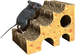 Pay 'n Shapes Tiny Habitat Enhancer Cheese