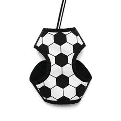 EasyGO Soccer