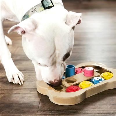 Busy Bone Interactive Pet Toy/Feeder