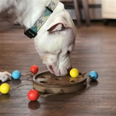 Bat-A-Ball Interactive Pet Toy/Feeder
