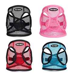 STARTER PACKAGE - 16 Netted EZ Wrap Step In Harnesses