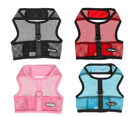 STARTER PACKAGE - 16 Netted Wrap N Go Harnesses