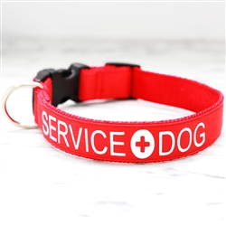 Service Dog Collars & Leashes