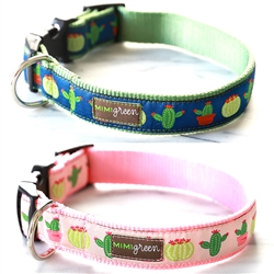 Aloe or Vera Cactus Dog Collars & Leashes