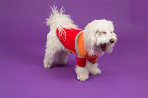 Diagonal Stripe T-Shirt in Orange/Red
