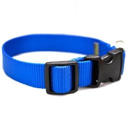 Royal Blue Webbing Collars & Leashes