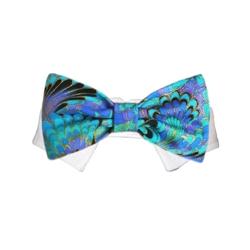 Amadeus Bow Tie Collar