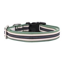 Kennel Club Dog Collar