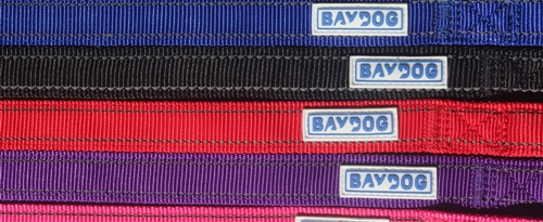 Hudson Bay Leash