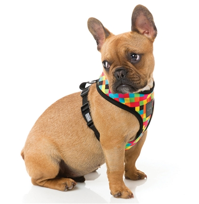 1983 (Multicolored Check) Dog Harness