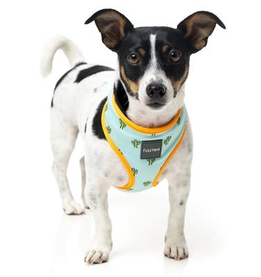 Tucson (Mint with Orange Trim) Dog Harness