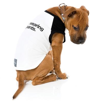 No Pants Dog T-Shirt