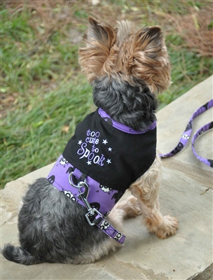 Halloween Dog Harness - To Cute To Spook
