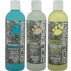 BALANCE Medicated Shampoos & Conditioners