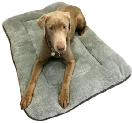Retreat Mat Grey by Messy Mutts