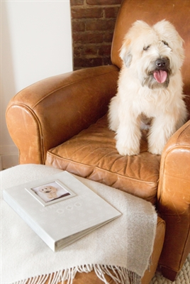 Pet File Keeper Organizer