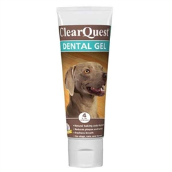 Clear Quest™ Dental Gel