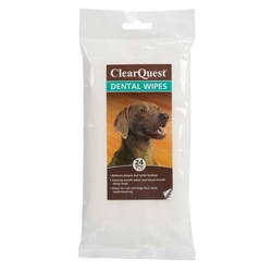 Clear Quest™ Dental Wipes, 24/pack