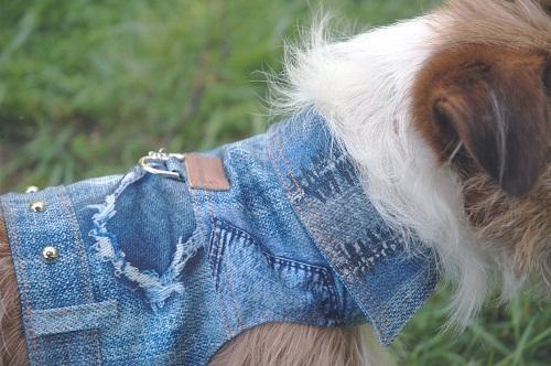 Cloak & Dawggie Denim Patch Jacket 4850 series