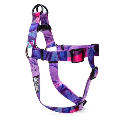 DayDream Dog Collars, Leads, & Harnesses by Wolfgang
