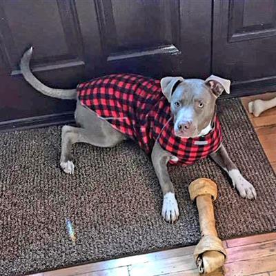 Patterned Fleece Sweater 6760 series