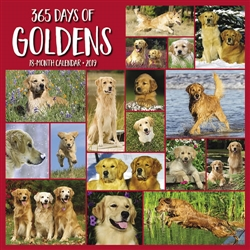 365 Days of Goldens 2019 Wall Calendar