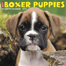 Boxer Puppies 2019 Wall Calendar