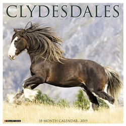 Clydesdales 2019 Wall Calendar