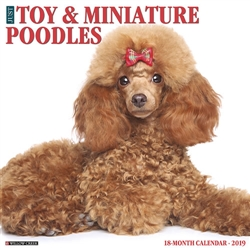 Toy & Miniature Poodles 2019 Wall Calendar