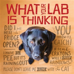 What Your Lab is Thinking Book